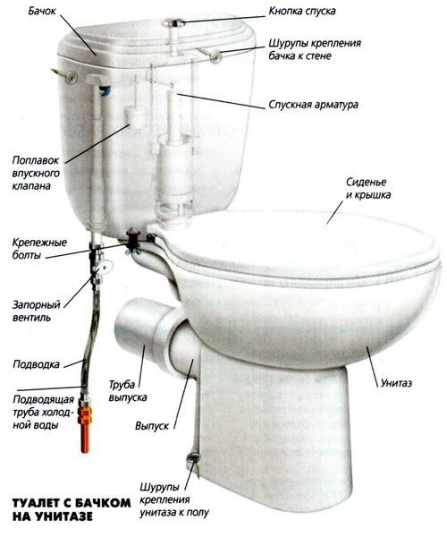 Как устанавливать туалет самостоятельно?