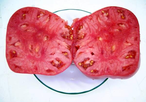 Очень крупный томат Розовый мед