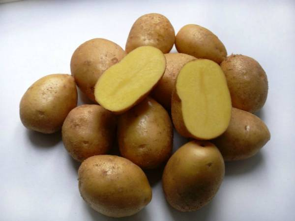 Как окучивать картошку вручную: советы новичкам