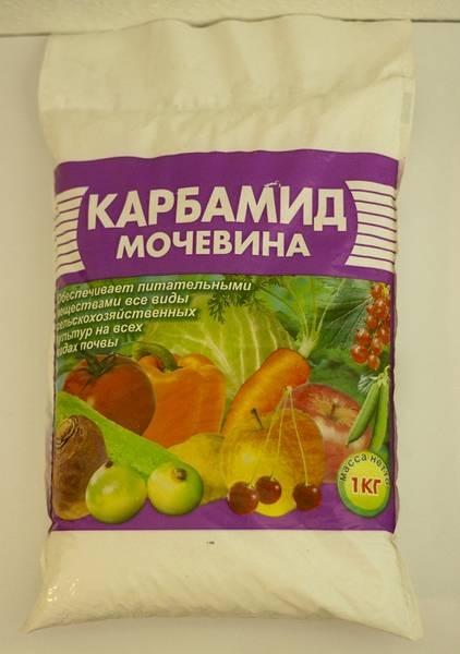 Методы борьбы с распространёнными вредителями картофеля